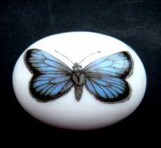 Porcelán kaboson - 40*30 mm - kék pillangó