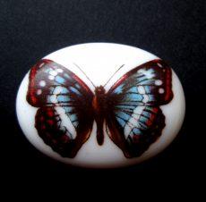 Porcelán kaboson - 40*30 mm - pillangó 2#