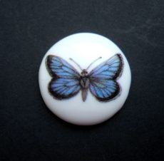 Porcelain cameo - 25 mm