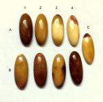 Mookait jáspis kaboson - 25x5
