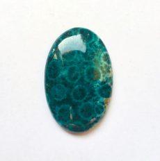Korall fosszília kaboson kék - 33*22 mm
