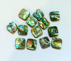 Paua shell bead - 18x13 mm