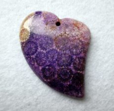 Corall fossil pendant bead