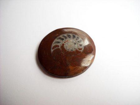 Vörös tengeri üledékes ammonit kaboson - 29 mm